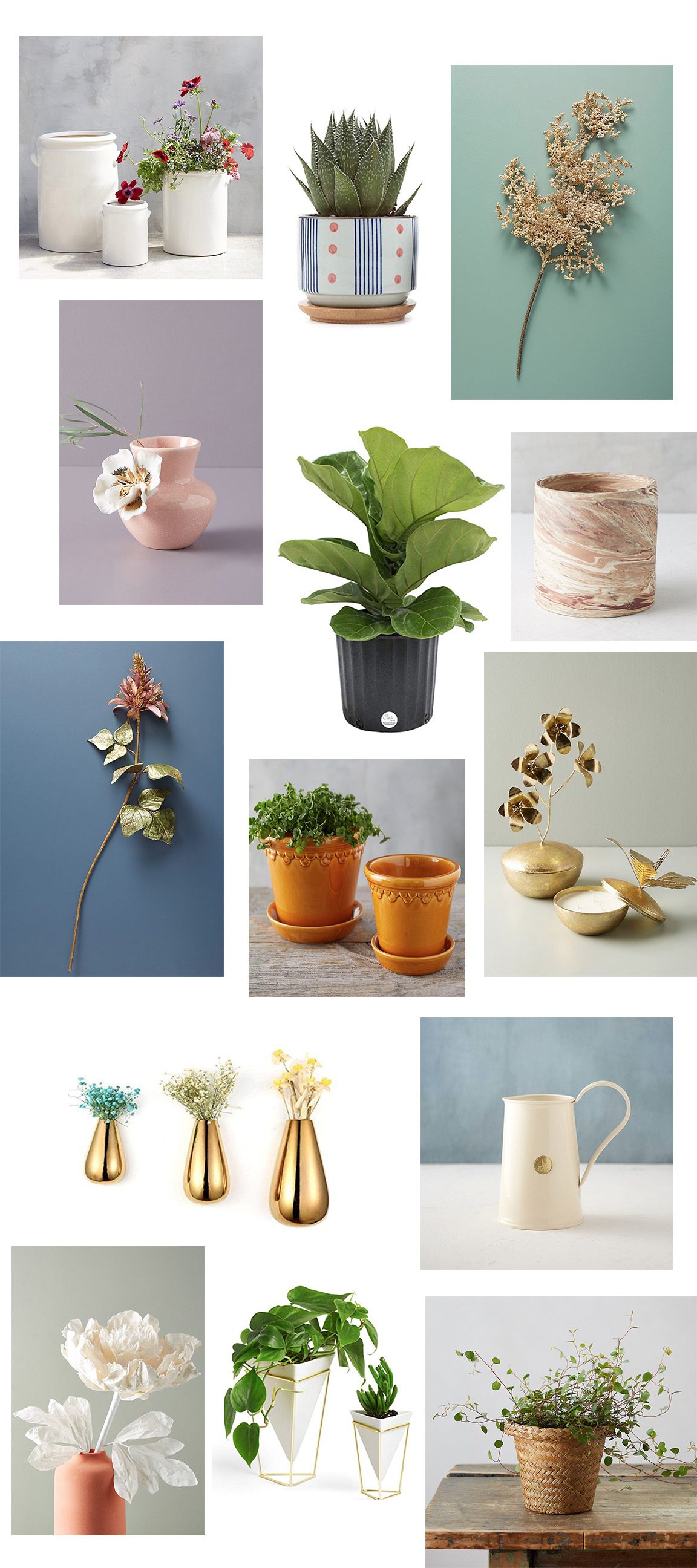 Gift Guide: The Plant Lady